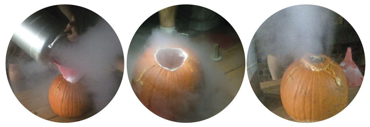 Figure 1 - Pouring liquid nitrogen into pumpkins. Pretty cool! Photo courtesy of Ravn Jenkins.